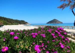 Skala Potamias, Blue Sky Boutique Villas | Apartments | Thassos | hotels | accommodation | Skala Potamias